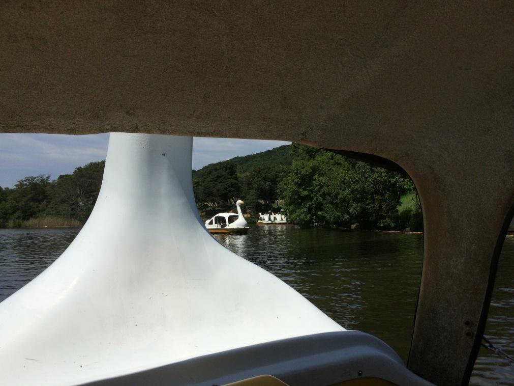 イングランドの丘 淡路 サイクルボート